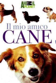 Il mio amico cane (2011)